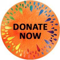 Donate Now - 2